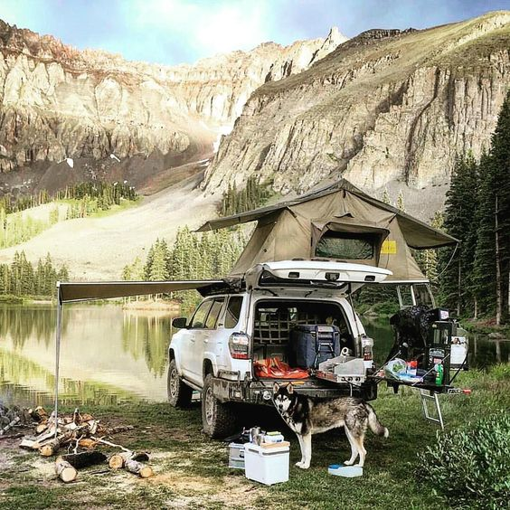truck camping with husky
