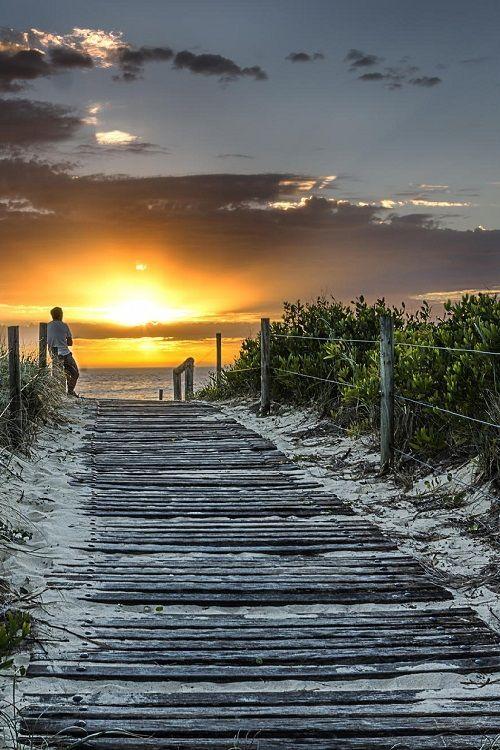 man enjoying beach sunset