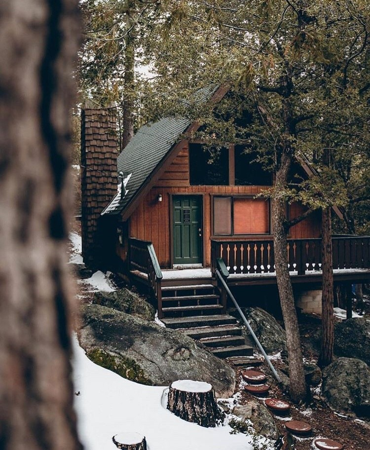 simple cabin in the woods