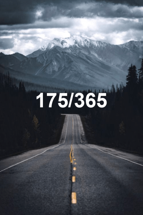 day 175 of the year 2019