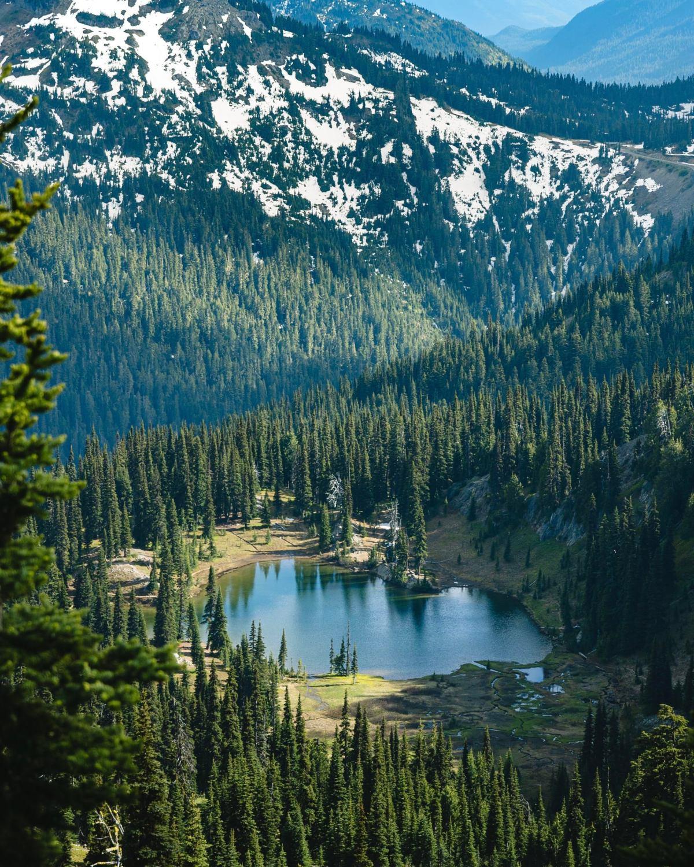 Chinook Pass Washington