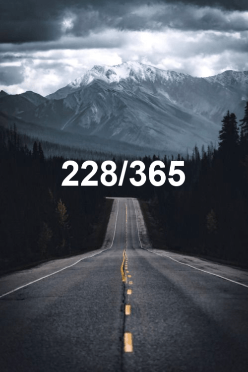 today is day 228 of the year 2019