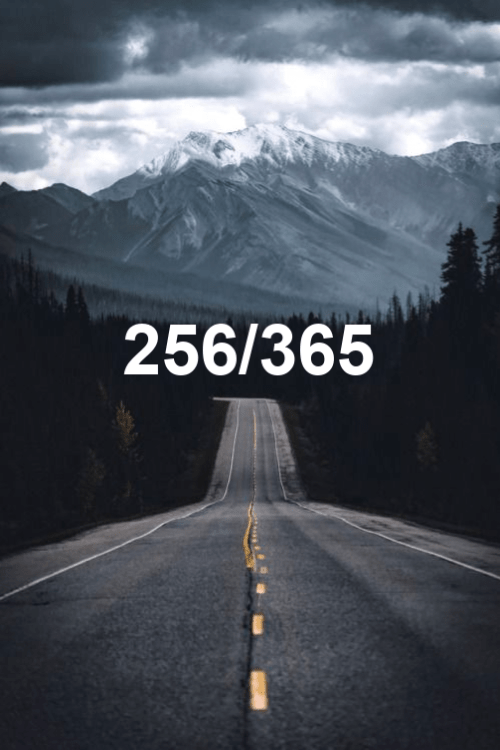 today is day 256 of the year 2019