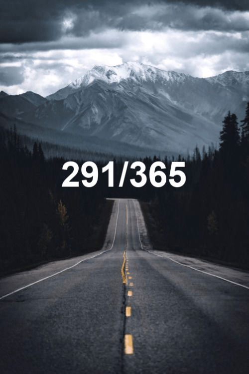 today is day 291 of the year 2019