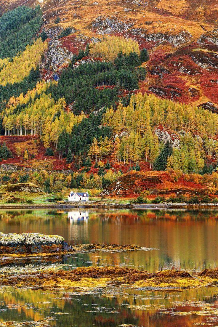 Fall - Scottish Highlands