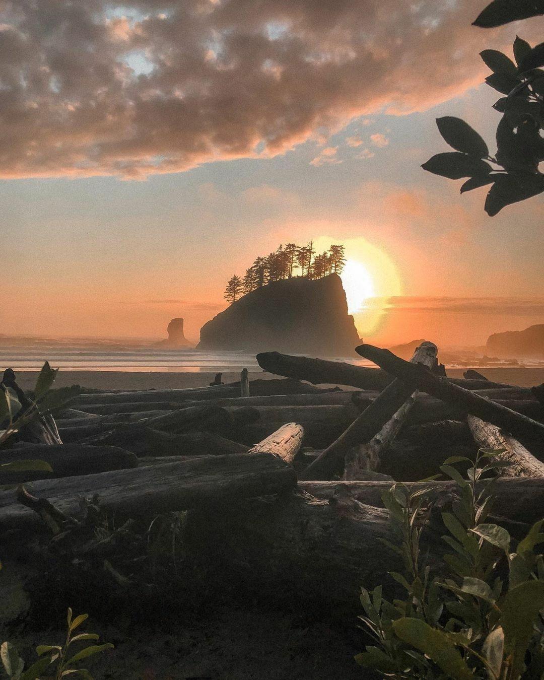 the manly life - oregon coast