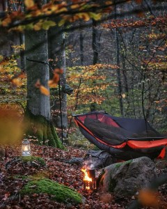 the manly life - campsite in the woods