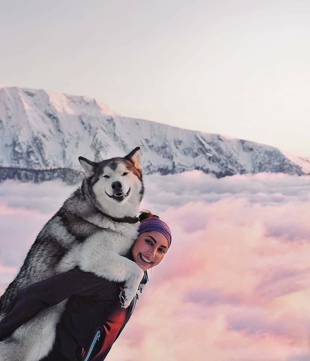 woman with smiling huskey on back