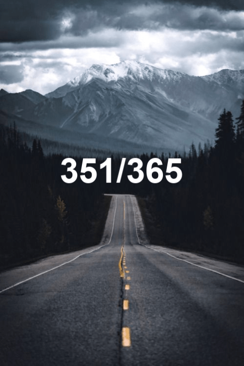 today is day 351 of the year 2019