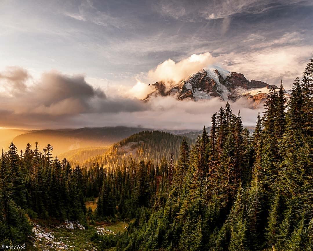 the manly life - Mount Rainier National Park