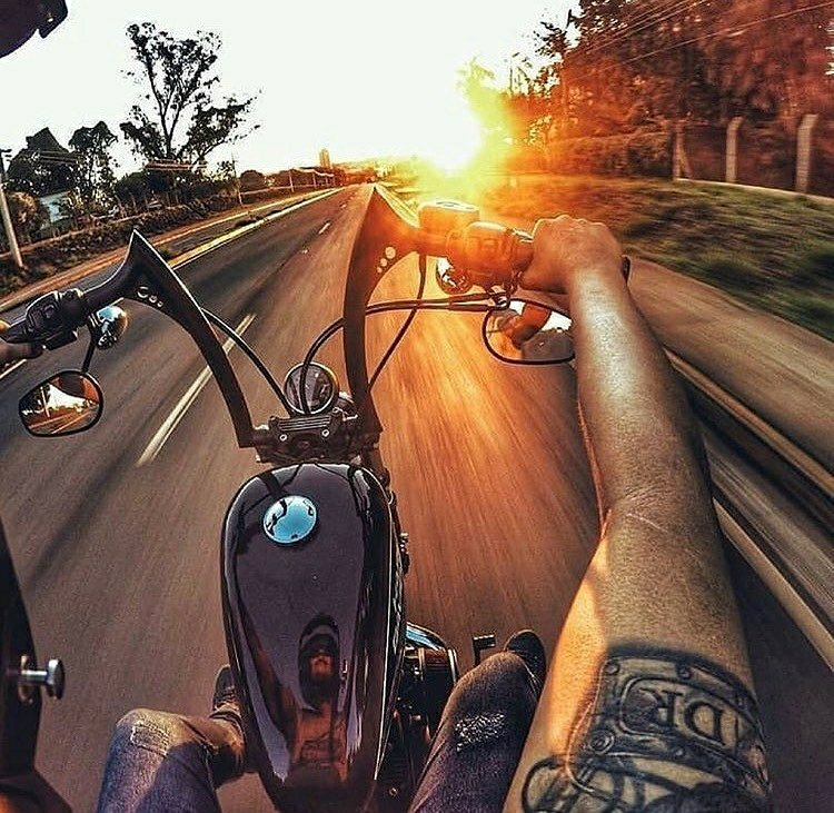 harley chopper sunset