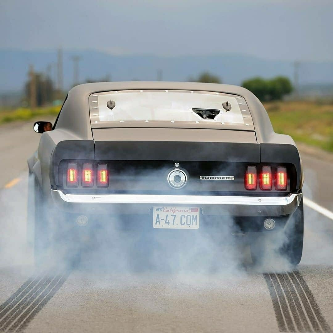 Shelby Fastback