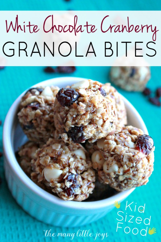 This variation on basic granola bites is sweet, crunchy, and full of good-for-you ingredients like oatmeal and flaxseed...a perfect kid-sized snack food.