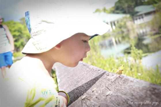 Travel with Kids - The Florida Keys and The Everglades Anhinga Trail