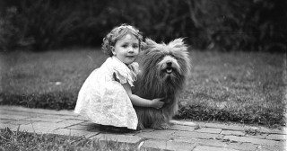 What's a Dog For: A Meditation on Love, Loss, and the Art of Presence