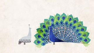 """A Miraculous """"Accident of Physics"""": The Animated Story of How Feathers Evolved"""