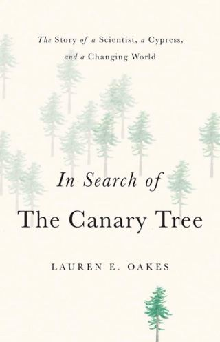 In Search of the Canary Tree: What a Disappearing Ancient Forest Can Teach Us About Resilience and Grace in a Changing World
