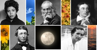 Beloved Writers on the Mightiest Antidote to Depression
