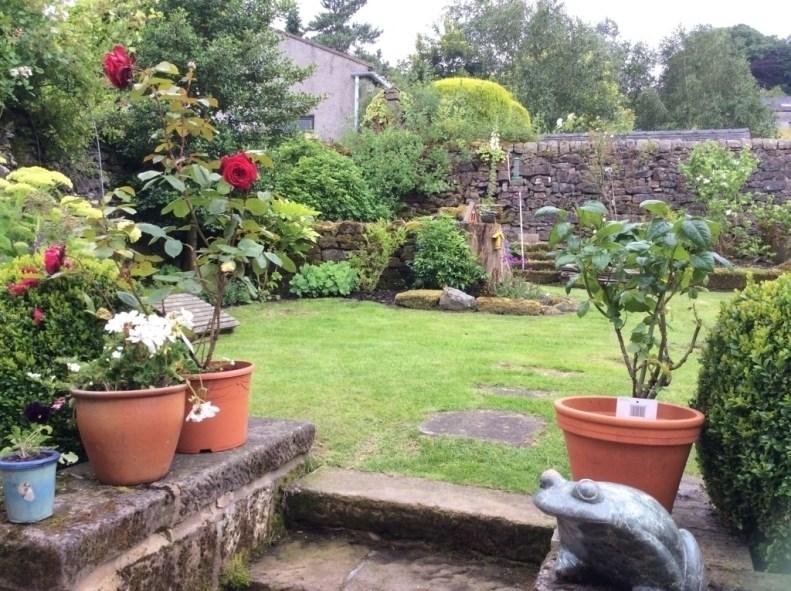 Crown Cottage garden July 2016