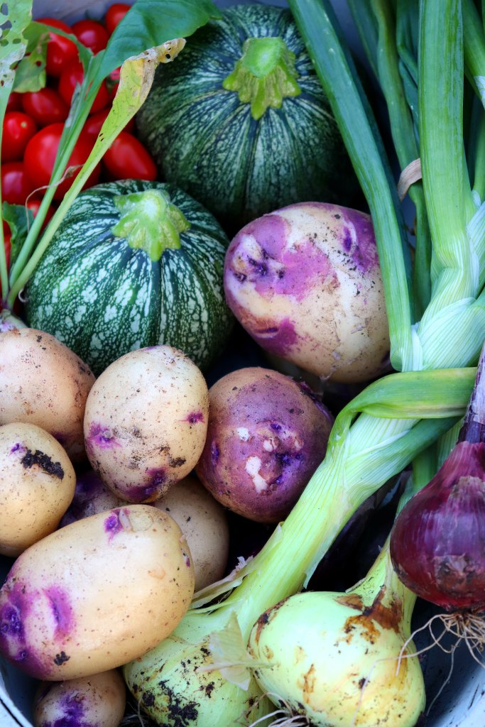homegrown veggies