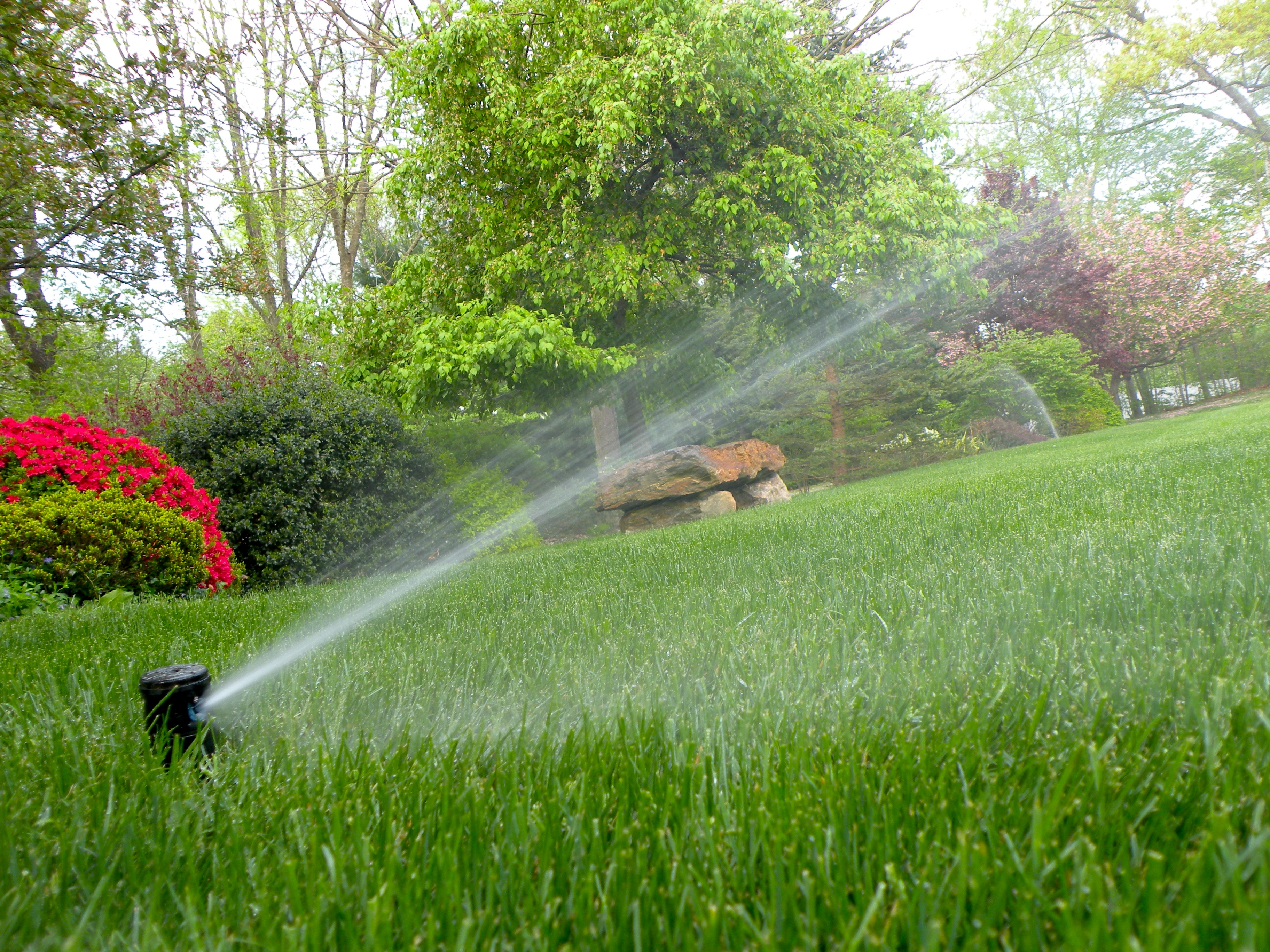 How to Program Your Gainesville Irrigation Timer Settings