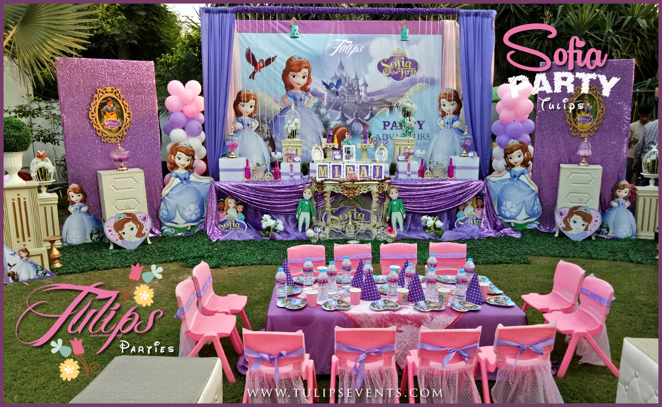 Sofia The First Decoration Ideas