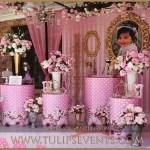 Fairy Princess Birthday 1st Birthday Party Decor Ideas In Pakistan