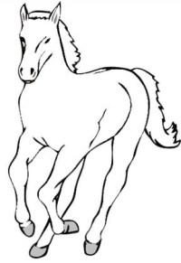 Malvorlagen Kleine Pferde 35 Luxus Pferde Mit Fohlen
