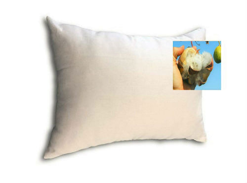 Kapok Pillows