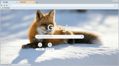 2560x1080 Fall Mountain Wallpaper Fox Chrome Themes Themebeta