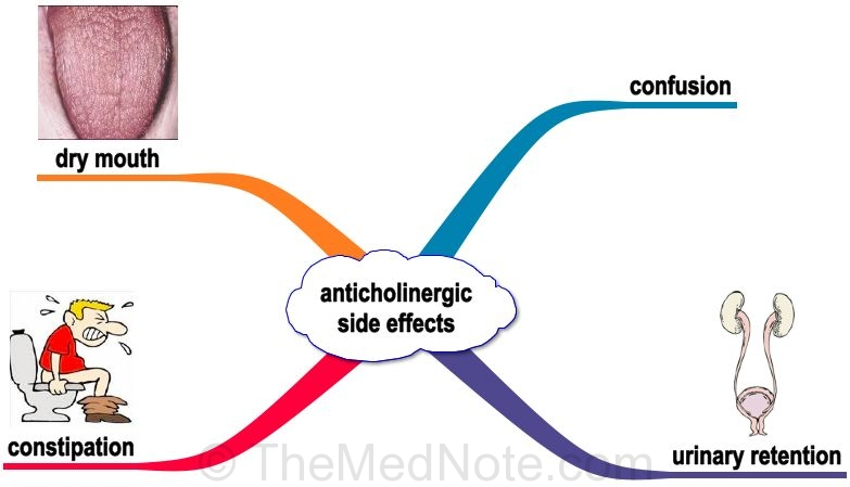 anticholinergic - anticholinergic drugs   pranata fani., Skeleton