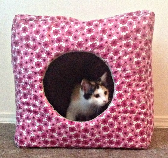 Make your own Kitty Cube for less than $15! #petbeds #cube #DIY
