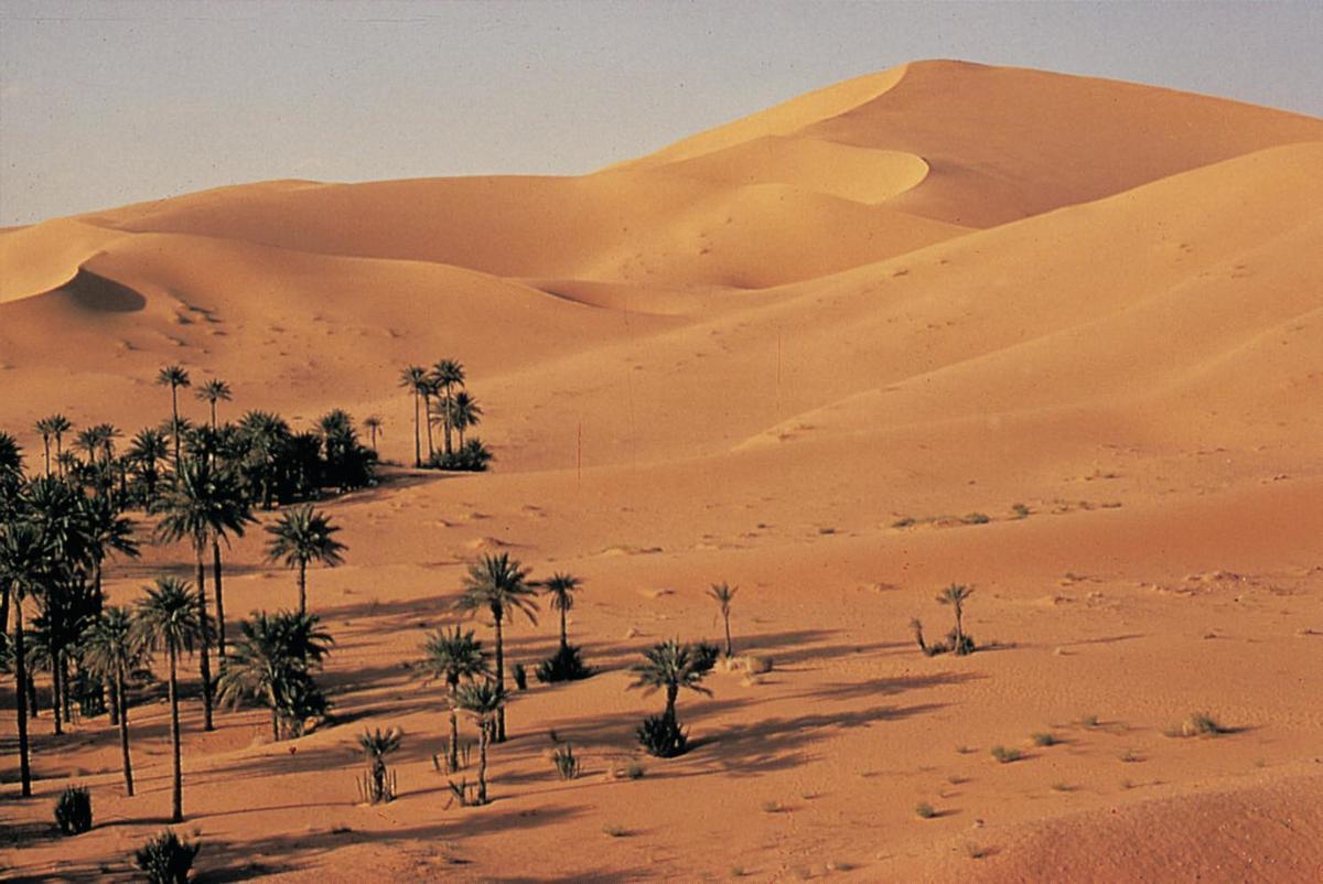 Africa S Landforms Tour Africa