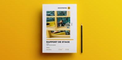 rapport stage gratuit