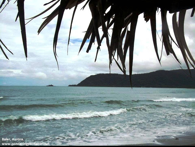 The Beauty That Is Baler