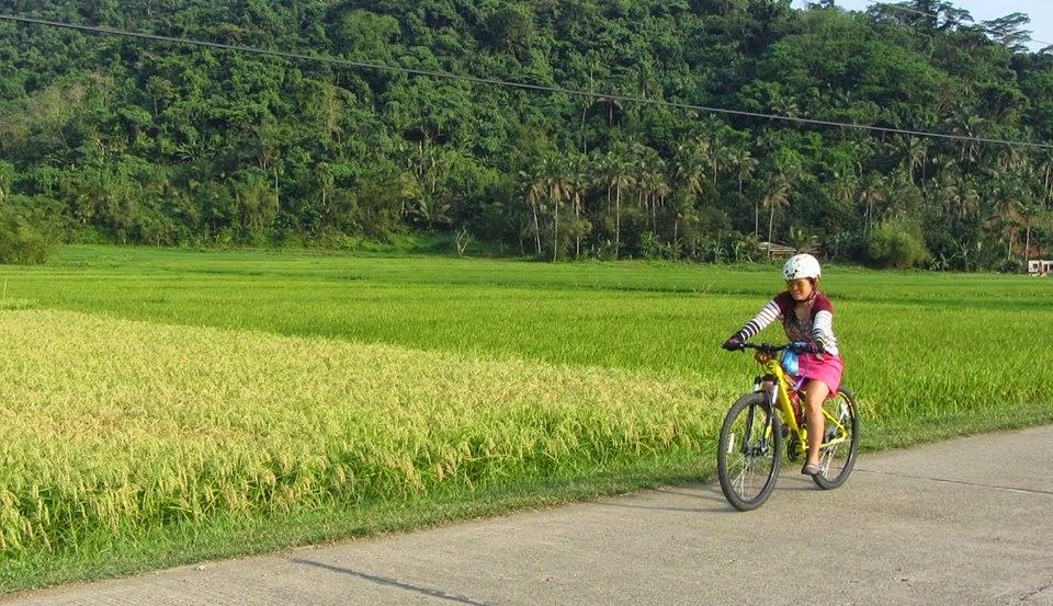 Why I Fell in Love with Biking