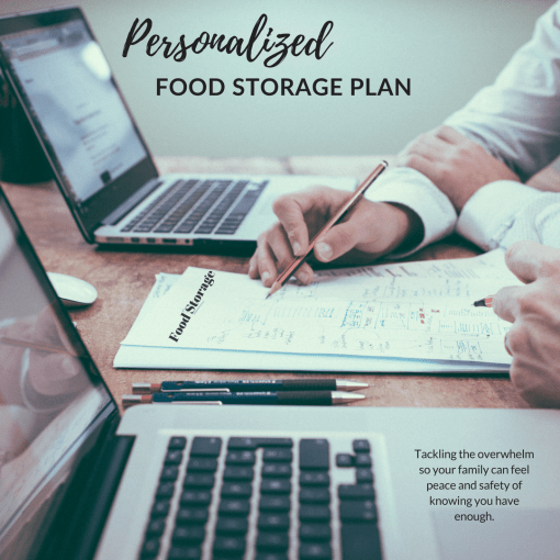Are you overwhelmed just thinking about food storage? Let me help you create your own personal food storage plan to get you on the right track, and save you time and money.