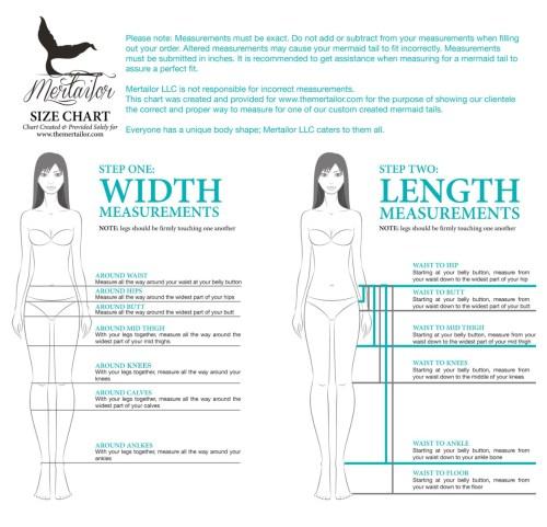 small resolution of mermaid body diagram wiring diagram forward mermaid body diagram