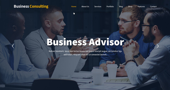Business Consulting