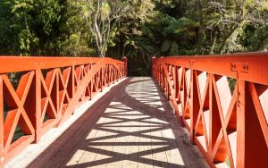 Pukekura Park bridge in New Plymouth