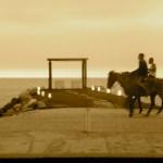 Horses on the beach, Puerto Vallarta