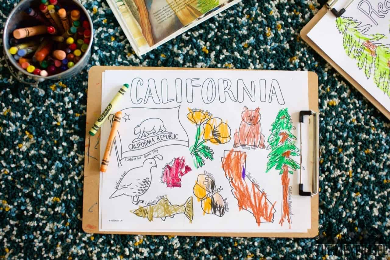 California redwood coloring pages | 854x1280