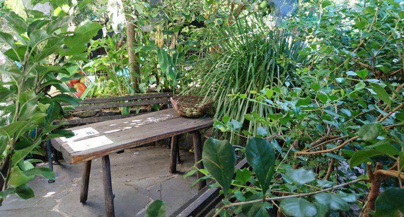 Grow food around eating areas