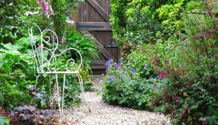 8 steps to the long thin garden of your dreams - The Middle-Sized ...