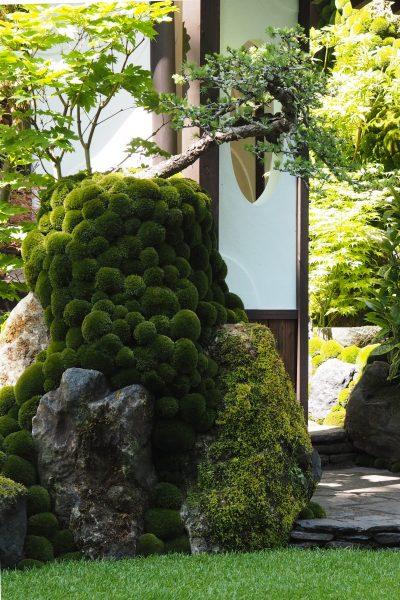 Japanese garden arch