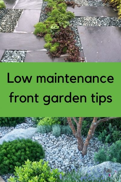 Low Maintenance Front Garden Ideas The Myths And The Truth The Middle Sized Garden Gardening Blog
