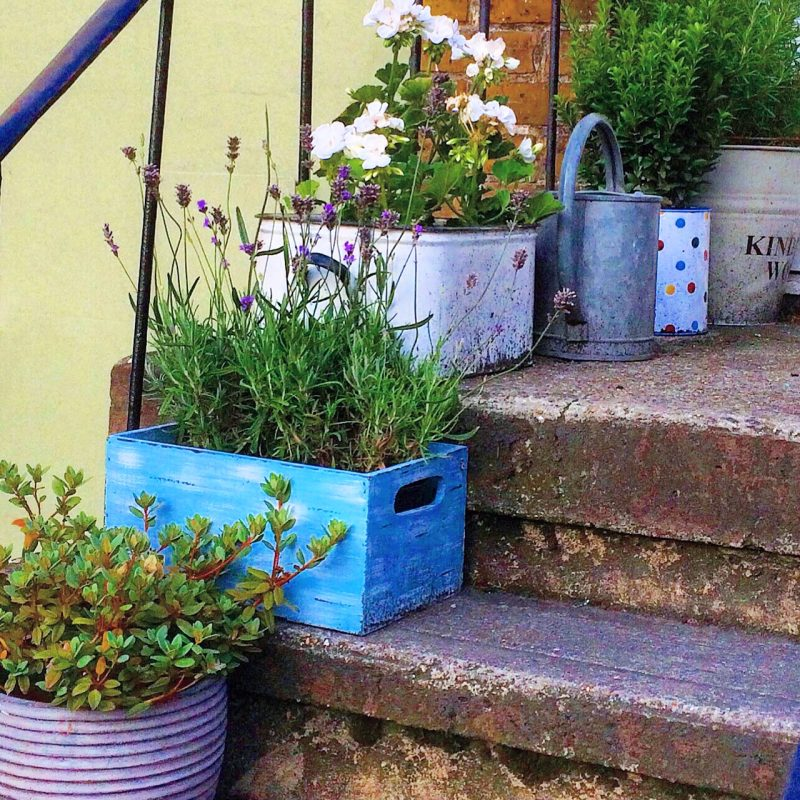 Love Your Pots! 25 Inspiring & Practical Ideas For Container