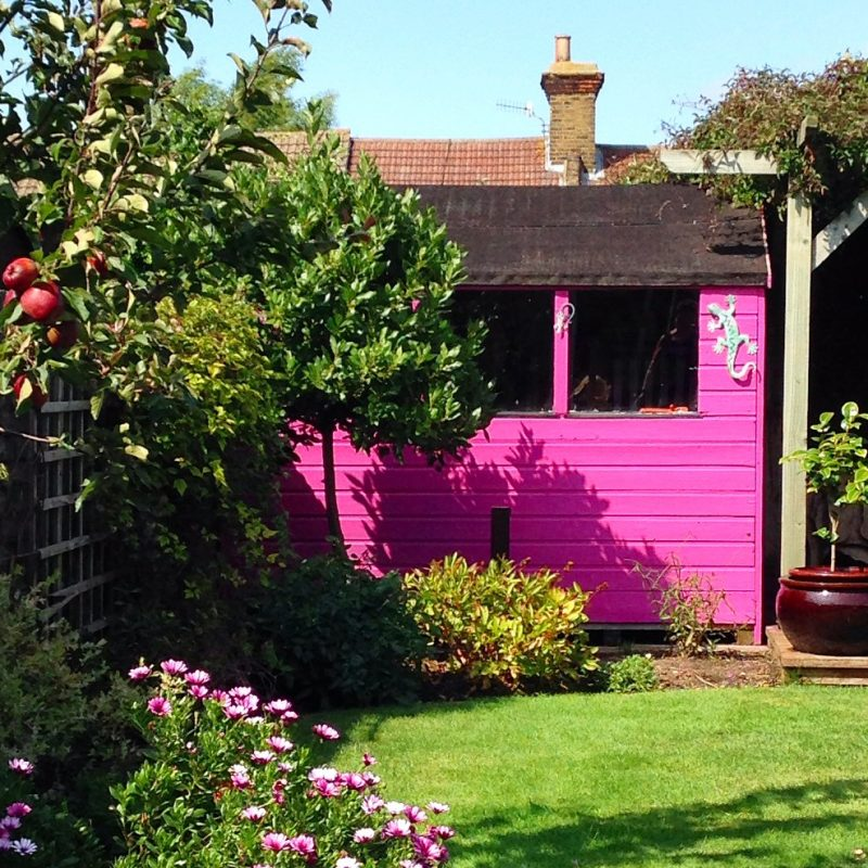 Re Vamp Your Shed A Really Short Easy Guide The Middle Sized Garden Gardening Blog