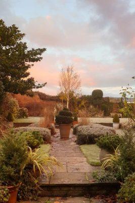 The Middlesized Garden
