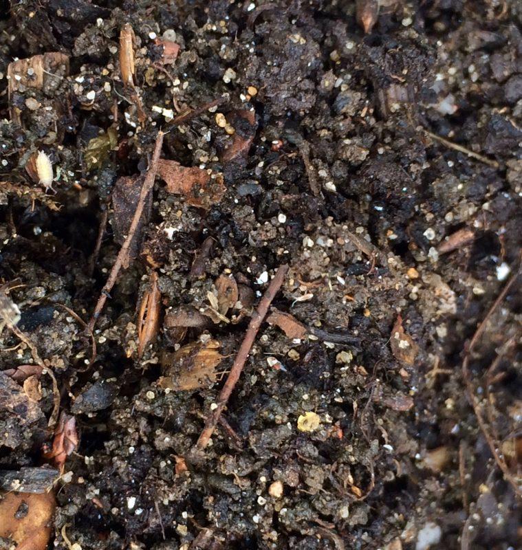 Use a compost accelerator
